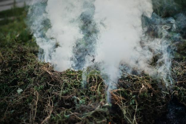 Dym z gasnącego ognia na ulicy. do użytku jako tekstura