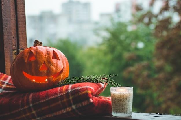 Dynia halloweenowa na przytulnym parapecie w czerwoną kratę. cała dynia i brylant na zewnątrz. wesołego halloween! jesień jest przytulna. deszcz na zewnątrz.