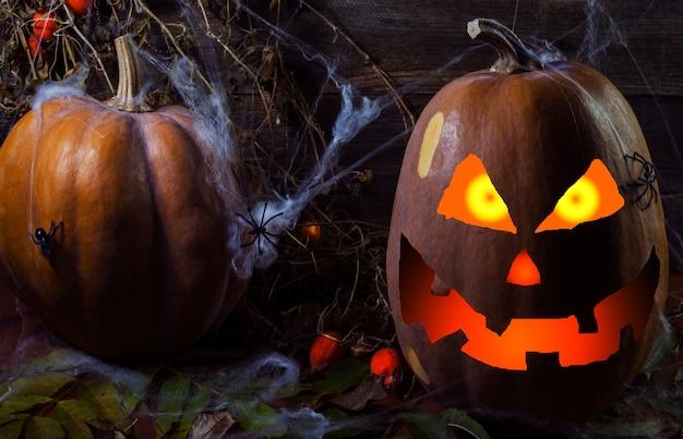 Dynia w sieci i pająki na tle drzewa na halloween