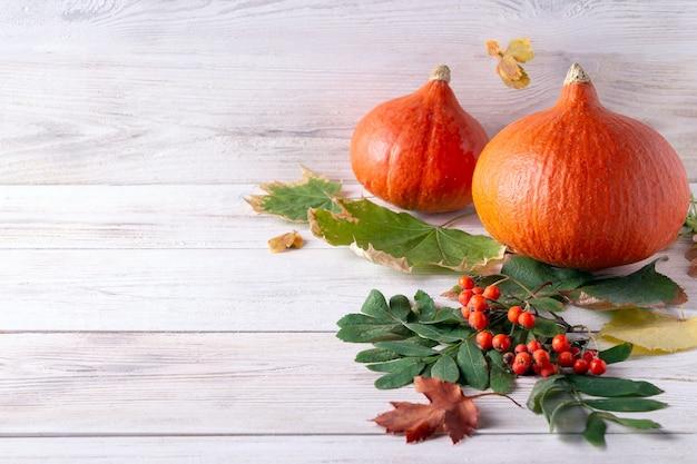 Dynie halloween i jesienne liście na białym drewnianym tle