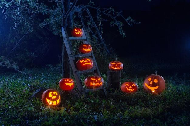 Dynie halloween jack-o-lantern na zewnątrz