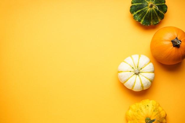 Dynie halloween na żółtym tle, miejsce na tekst, leżał płasko.