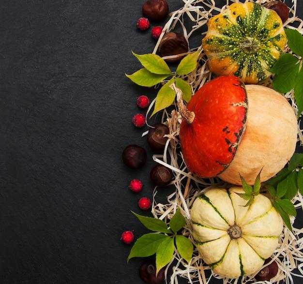 Dynie z liści jesienią
