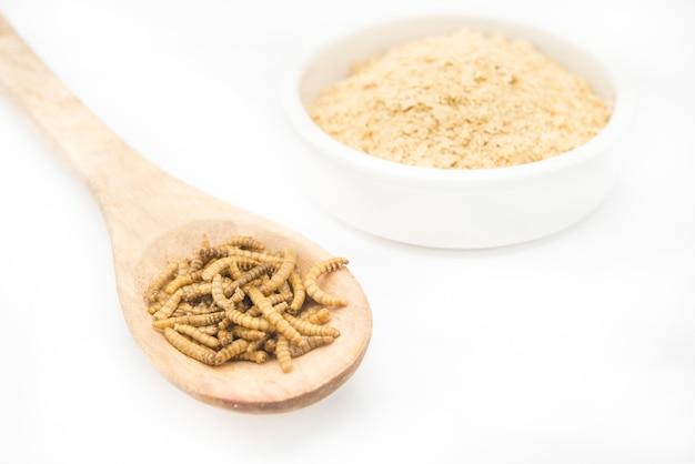 Dżdżownicy mąka w drewnianej łyżce odizolowywającej