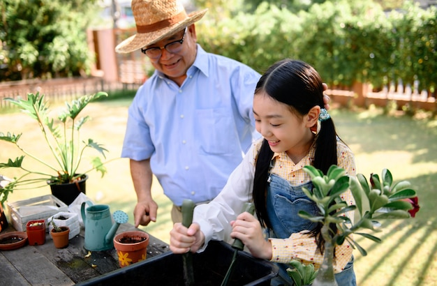 Dziadek i wnuczka sadzenia drzewa w ogrodzie w domu. styl życia w wieku emerytalnym z rodziną na wakacjach.
