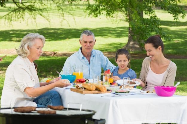Dziadkowie matka i córka o lunch w trawniku