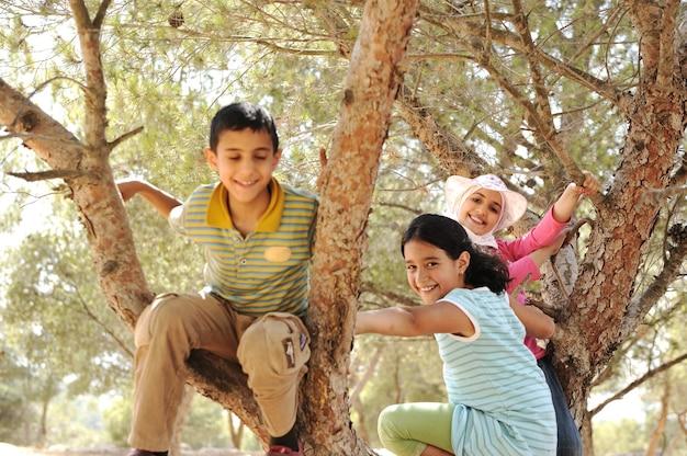 Dzieci bawiące się i wspinające się na drzewo