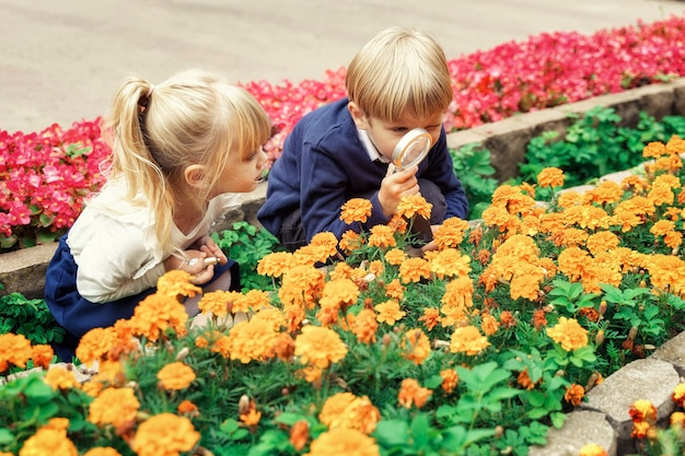 Dzieci bawiące się w parku miejskim, patrząc na kwiaty przez lupę