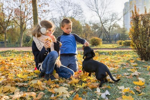 Dzieci chłopiec i dziewczynka bawi się z psem jamnika