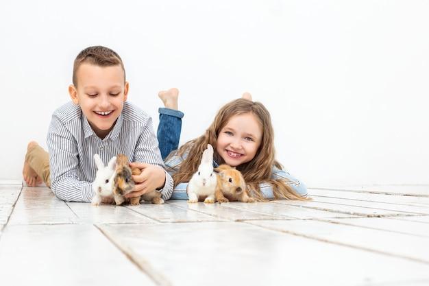 Dzieci chłopiec i dziewczynka szczęśliwe z pięknymi puszystymi małymi królikami na białym tle