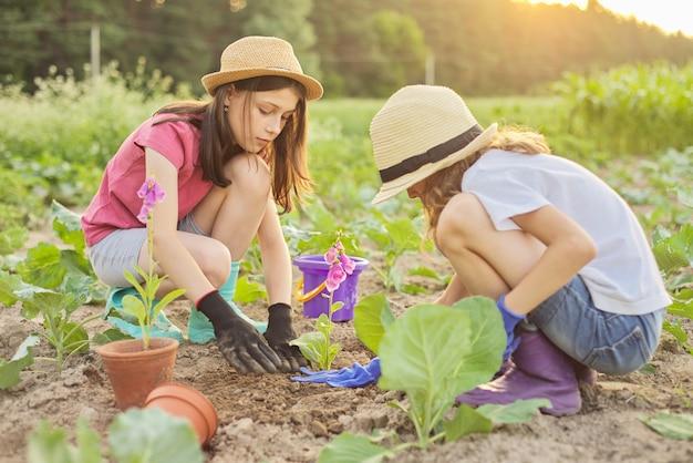Dzieci dwie piękne dziewczyny w kapeluszach z kwiatami w doniczkach, rękawiczki z narzędziami ogrodniczymi, sadzenie roślin w ziemi. tło wiosna lato krajobraz, natura, niebo