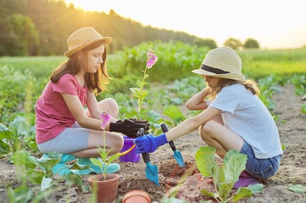 Dzieci dziewczynki sadzą kwitnącą roślinę doniczkową w ziemi. mali piękni ogrodnicy w rękawiczkach z łopatami ogrodowymi