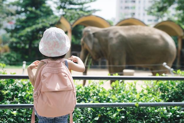 Dzieci karmią słonie azjatyckie w tropikalnym parku safari podczas letnich wakacji. dzieci oglądają zwierzęta
