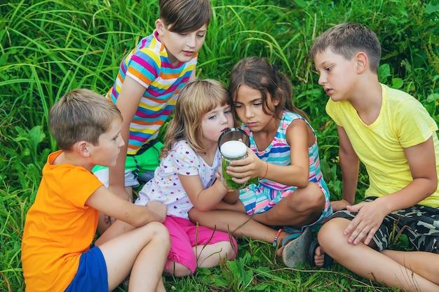 Dzieci patrzą przez lupę na naturę. selektywne skupienie. natura.