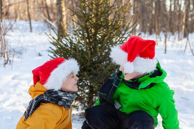 Dzieci w czapkach świętego mikołaja bawią się śnieżkami w lesie w pobliżu choinki.
