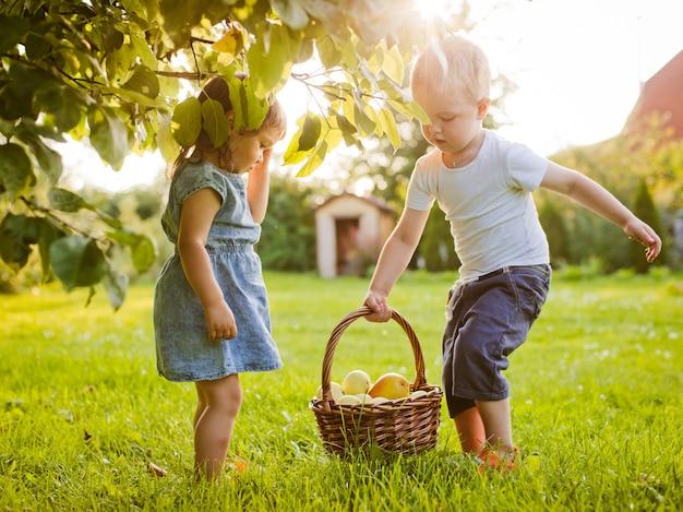 Dzieci w ogrodzie z koszem