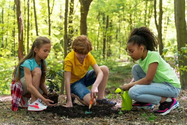 Dzieci wspólnie siedzą w lesie