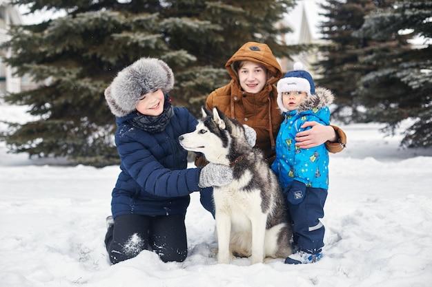 Dzieci wychodzą i bawią się z psem husky w zimie. dzieci siedzą na śniegu i głaskają psa husky. spaceruj po parku zimą, radość i zabawa, pies husky o niebieskich oczach.