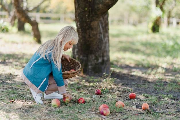 Dzieci z jabłkiem w sadzie. koncepcja zbiorów.