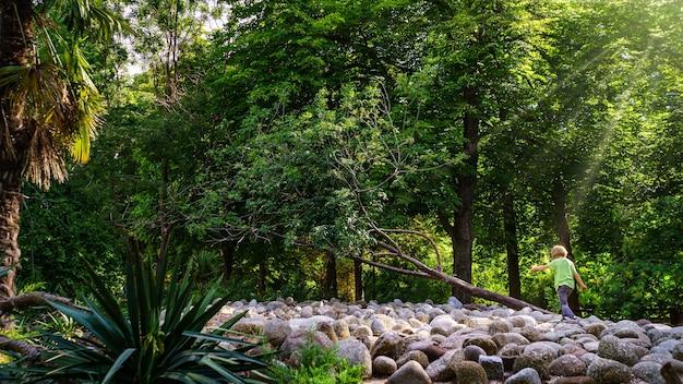 Dziecko bawiące się w parku z dużymi kamieniami i promieniami słonecznymi wychodzącymi z drzew.