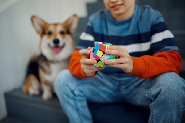 Dziecko i jego pies bawią się kostkami puzzli na schodach. zabawka do treningu mózgu i logicznego umysłu, kreatywna gra, rozwiązywanie złożonych problemów