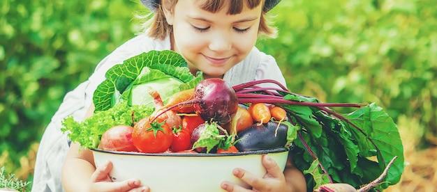 Dziecko i warzywa w gospodarstwie. zdjęcie.