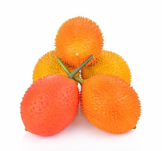 Dziecko jackfruit, spiny gorzka gurda, słodka grourd lub cochinchin gurda na białym tle ,.