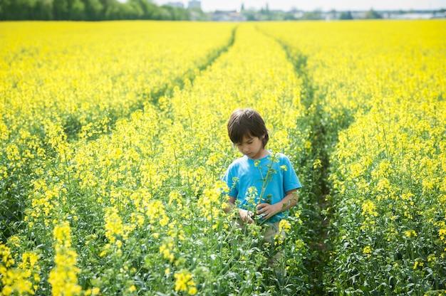 Dziecko na polu rolnych