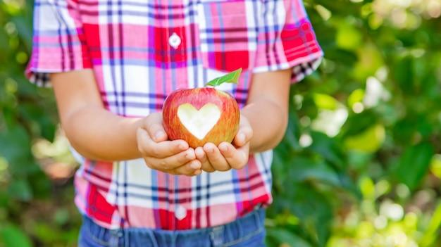 Dziecko podnosi jabłka w ogródzie w ogródzie