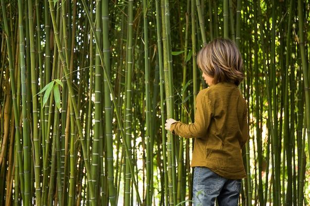 Dziecko spacerujące po bambusowym lesie?