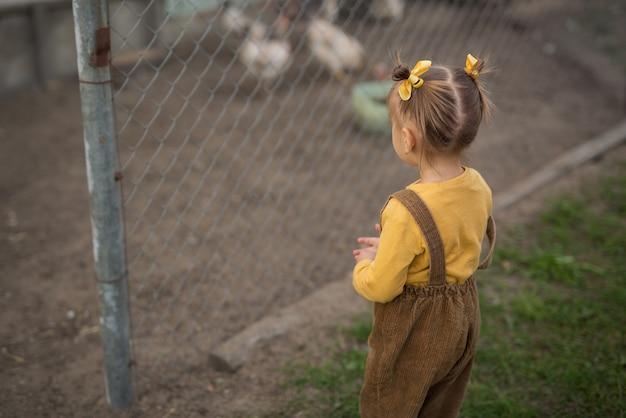 Dziecko stoi przy wolierze z kurami.