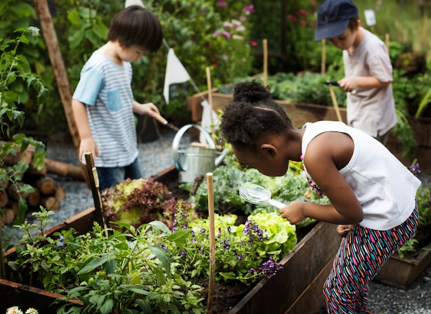 Dziecko w doświadczeniu i idei ogrodu