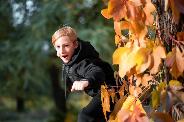 Dziecko wyskakuje zza drzewa z żółtymi jesiennymi liśćmi i krzyczy