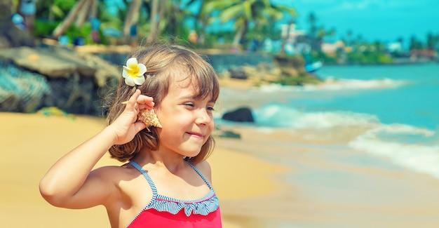Dziecko z rozgwiazdą i muszlami w dłoniach na plaży