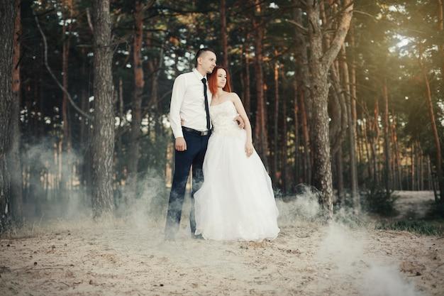 Dzień ślubu. pan młody obejmuje pannę młodą, miłości para w sosnowym lesie.