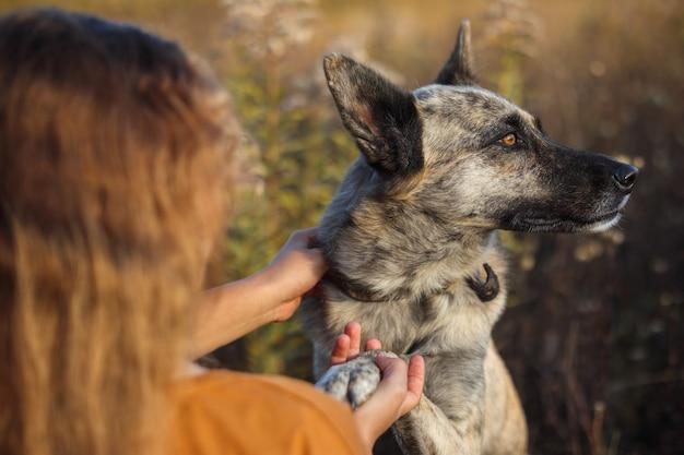 Dziewczyna głaszcząca psa na tle jesiennego żółtego krajobrazu