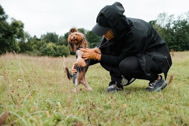 Dziewczyna i yorkshire terrier na spacer po parku. gospodyni bawi się ze swoim zwierzakiem na świeżym powietrzu.