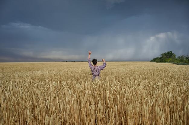 Dziewczyna na polu pszenicy przed burzą mężczyzna w pszenicy