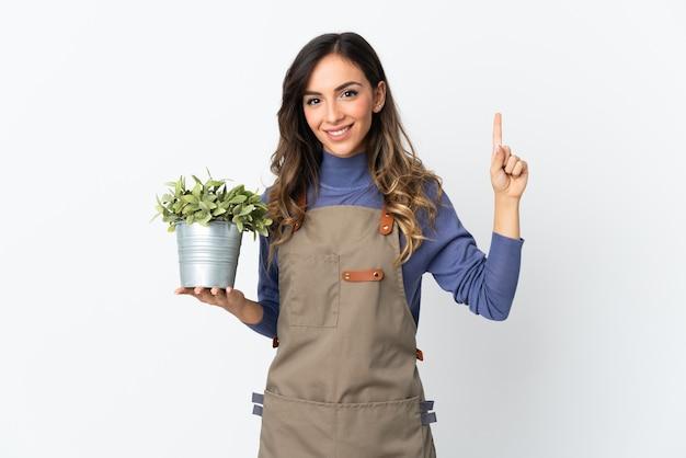 Dziewczyna ogrodnik trzyma roślinę na białym tle na białej ścianie, wskazując na świetny pomysł