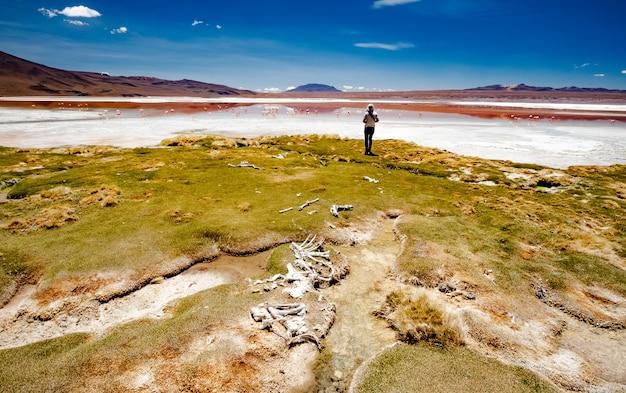 Dziewczyna patrząca na słoneczną lagunę na boliwijskiej pustyni