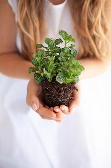 Dziewczyna przesadzi rośliny doniczkowe w domu. ziemia, sadzonka, wiosna, ręce, pojęcie pro.