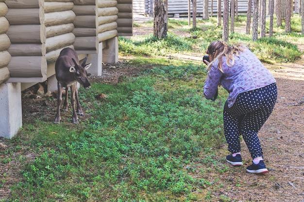 Dziewczyna robi zdjęcie jelenia w pobliżu domu z bali