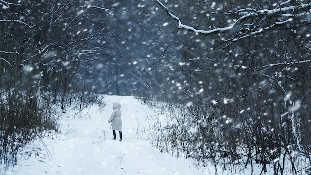 Dziewczyna spaceruje w zimowym lesie podczas obfitych opadów śniegu. dziewczyna zgubiła się w lesie podczas śnieżycy