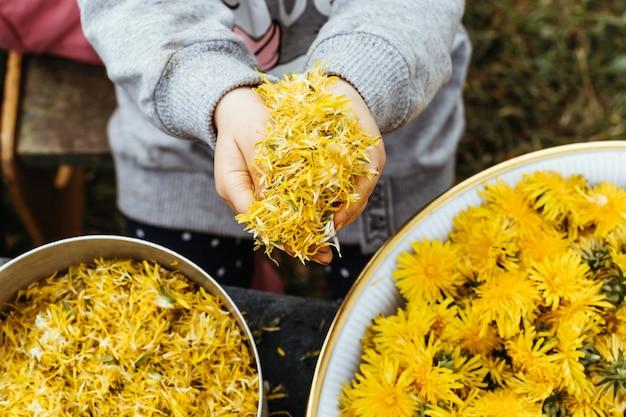 Dziewczyna tanecznie zbiera pyłek