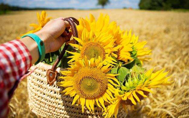 Dziewczyna trzyma bukiet słoneczników w torbie słomy na polu pszenicy.