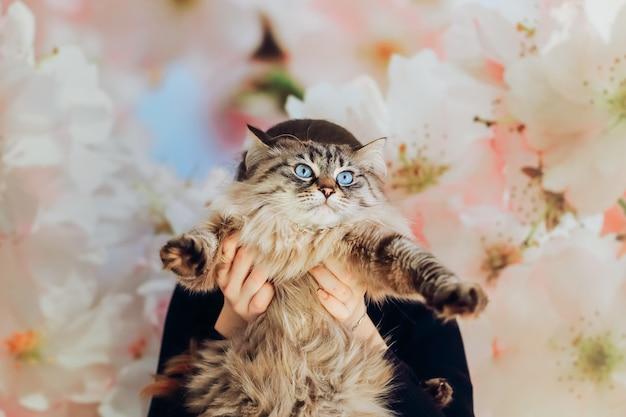 Dziewczyna trzyma przed sobą kota na tle ściany z kwiatami