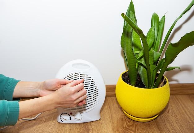 Dziewczyna trzyma ręce w pobliżu plastikowego termowentylatora i ogrzewa dłonie, dostosowując temperaturę w domu, przepływ ciepła do dłoni. doniczka w tle.