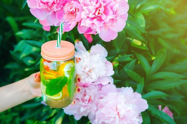 Dziewczyna trzyma świeżą lemoniadę w słoiku ze słomą. hipster letni napój w parze z piwoniami. ekologiczny w naturze. cytryny, pomarańcze i jagody z miętą w szklance. piękne wiosenne kwiaty.
