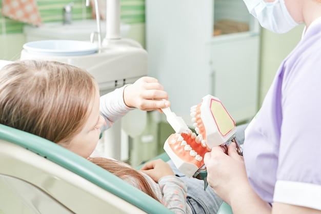 Dziewczyna uczy dentysty, jak myć zęby. stomatolog dziecięcy edukujący dziecko w zakresie szczotkowania zębów na modelce.