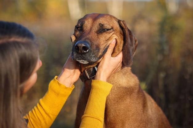 Dziewczyna uśmiecha się rękami na pysku psa. widok z tyłu